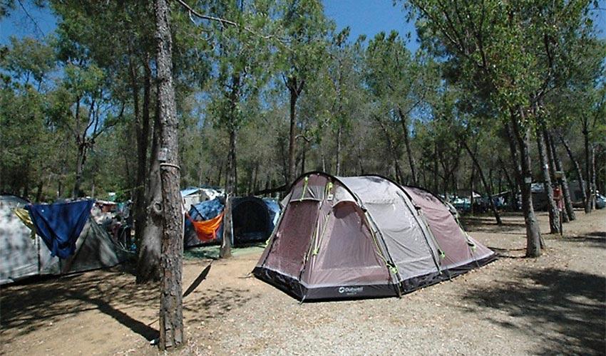 Camping Lacona, Elba