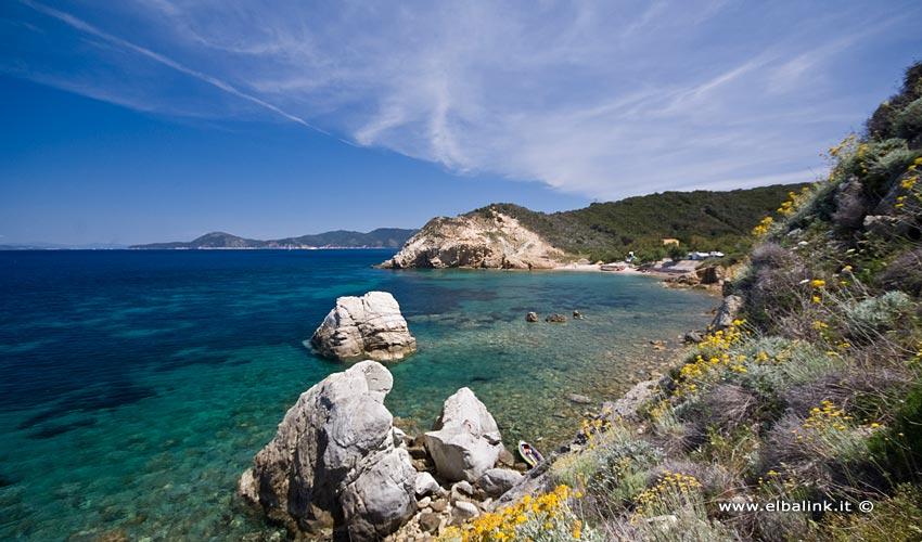 Spiaggia dell'Acquaviva, Elba
