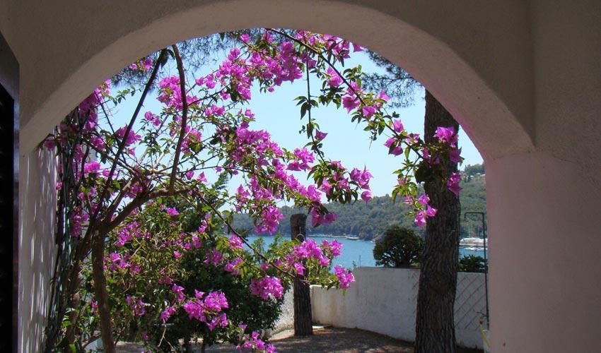 Villa Marinella, Elba