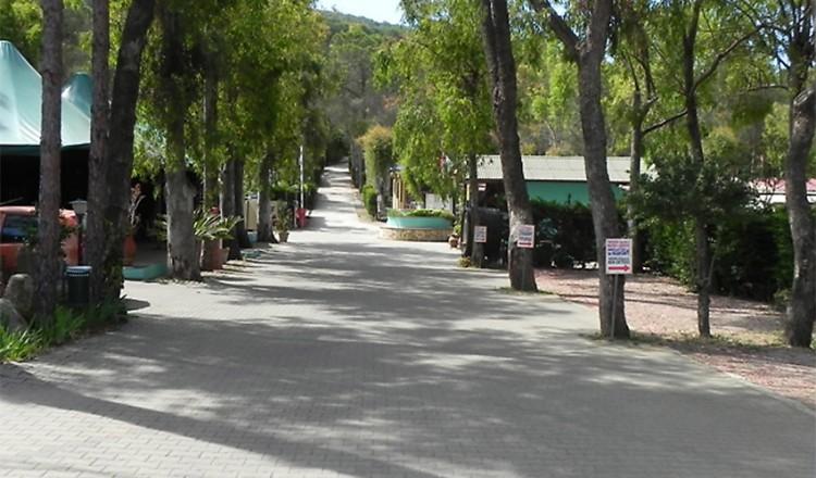 camping-lacona-07